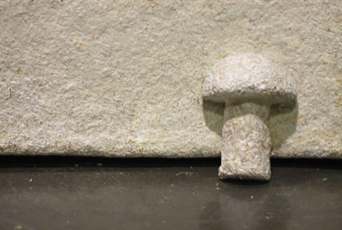 EPS replacement packaging - Mushroom Packaging