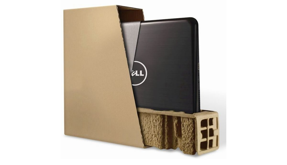 Dell Computer in Sustainable Packaging