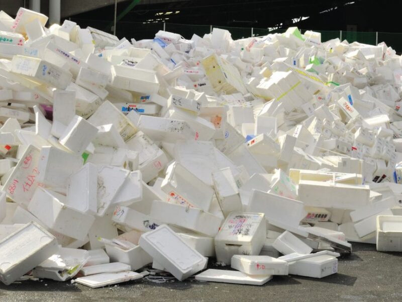 The fight to replace polystyrene packaging